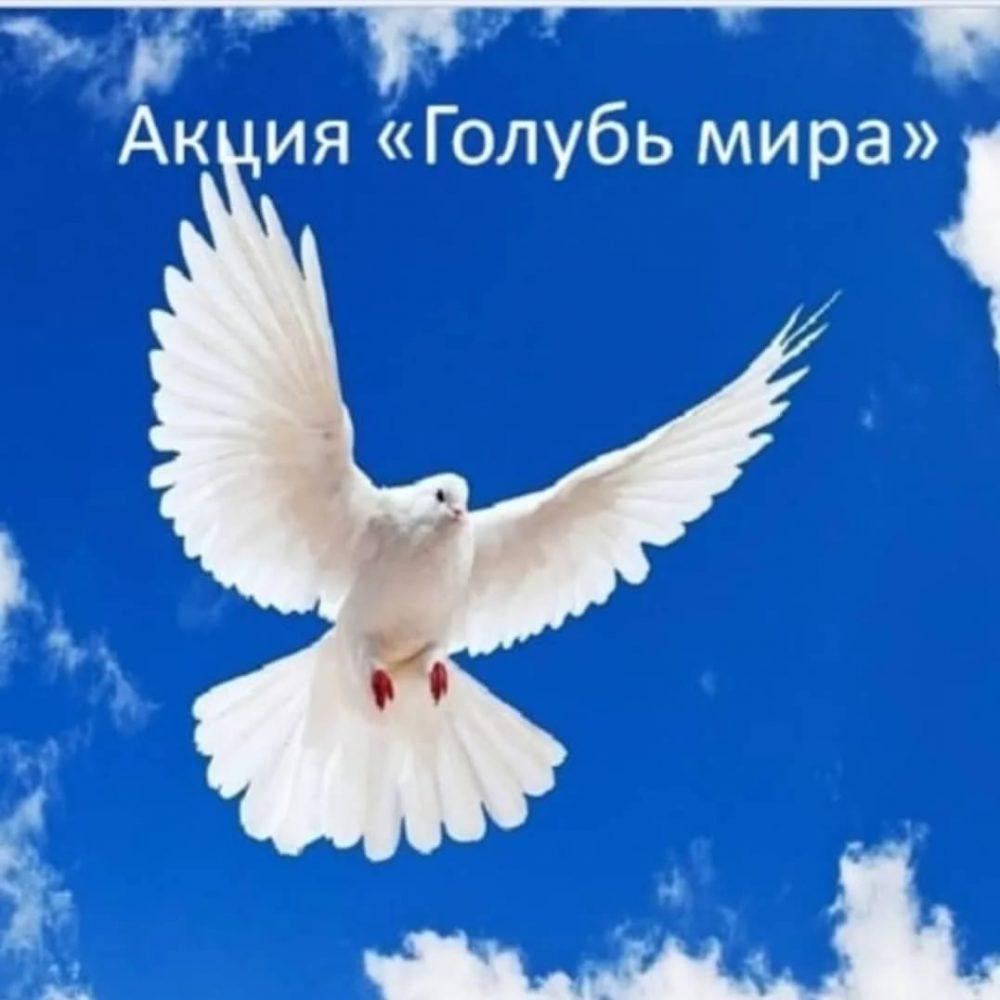 Акция «Голубь мира»